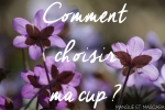 Comment choisir ma cup