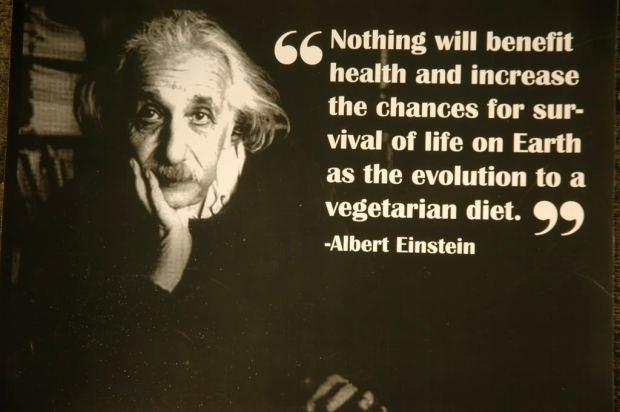 albert-einstein-vegetarian-quote-3
